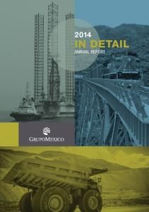 IN DETAIL ANNUAL REPORT