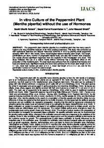 In vitro Culture of the Peppermint Plant (Mentha piperita) without the use of Hormones