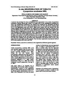 In vitro REGENERATION OF TOMATO (Lycopersicon esculentum Mill)