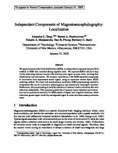 Independent Components of Magnetoencephalography: Localization