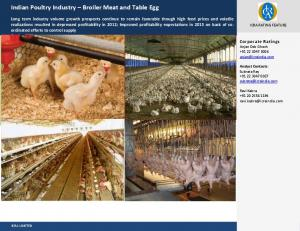 Indian Poultry Industry Broiler Meat and Table Egg