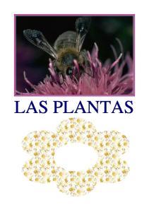 INDICE. 1.El reino vegetal: Las plantas Tipos de plantas Partes de las plantas La vida de las plantas