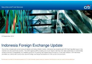 Indonesia Foreign Exchange Update