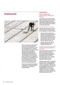 Indonesia. Income tax. Newly-implemented regulations for the Income Tax Law