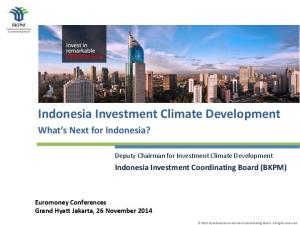 Indonesia Investment Climate Development