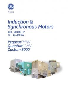 Induction & Synchronous Motors