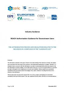Industry Guidance. REACH Authorisation Guidance for Downstream Users