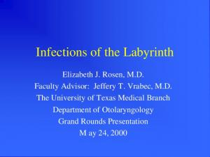 Infections of the Labyrinth