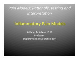 Inflammatory Pain Models
