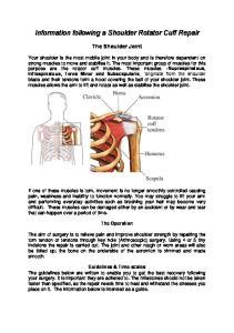 Information following a Shoulder Rotator Cuff Repair