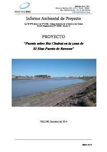 Informe Ambiental de Proyecto PROYECTO