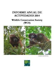 INFORME ANUAL DE ACTIVIDADES 2014
