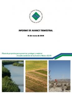 INFORME DE AVANCE TRIMESTRAL