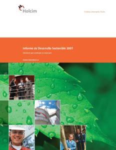 Informe de Desarrollo Sostenible 2007