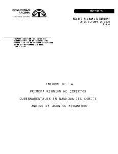 INFORME DE LA PRIMERA REUNION DE EXPERTOS GUBERNAMENTALES EN NANDINA DEL COMITE ANDINO DE ASUNTOS ADUANEROS