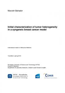 Initial characterization of tumor heterogeneity in a syngeneic breast cancer model