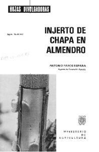 INJERTO DE CHAPA EN ALMENDRO
