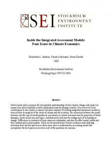Inside the Integrated Assessment Models: Four Issues in Climate Economics