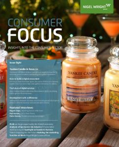 INSIGHTS INTO THE CONSUMER SECTOR