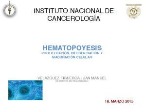 INSTITUTO NACIONAL DE CANCEROLOGÍA HEMATOPOYESIS PROLIFERACIÓN, DIFERENCIACIÓN Y MADURACIÓN CELULAR VELÁZQUEZ FIGUEROA JUAN MANUEL