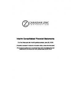 Interim Consolidated Financial Statements