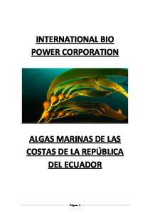INTERNATIONAL BIO POWER CORPORATION