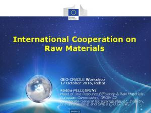 International Cooperation on Raw Materials