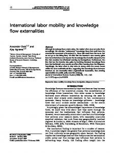 International labor mobility and knowledge flow externalities