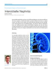 Interstitielle Nephritis