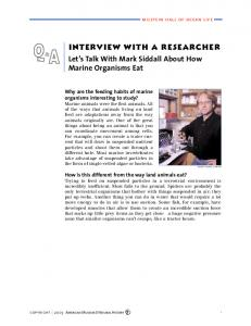 interview with a researcher