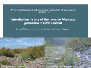 Introduction history of the invasive Myricaria germanica in New Zealand