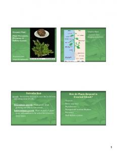 Introduction. How do Plants Respond to External Stimuli?