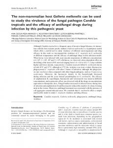 Introduction. Keywords Candida tropicalis, Galleria mellonella, phagocytosis, antifungal drugs, virulence