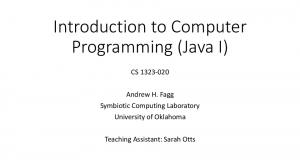 Introduction to Computer Programming (Java I)