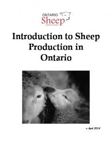 Introduction to Sheep Production in Ontario