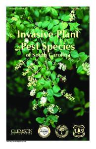 Invasive Plant Pest Species