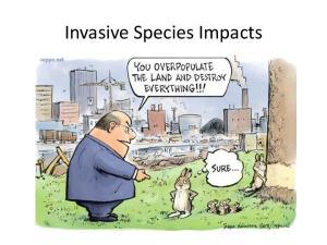 Invasive Species Impacts