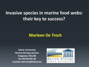 Invasive species in marine food webs: their key to success?