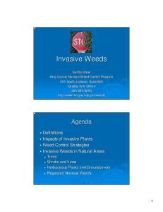 Invasive Weeds. Sasha Shaw King County Noxious Weed Control Program 201 South Jackson, Suite 600 Seattle, WA