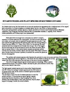 INVASIVE WOODLAND PLANT SPECIES OF SOUTHERN ONTARIO