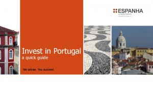 Invest in Portugal a quick guide. We advise. You succeed