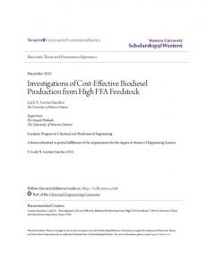 Investigations of Cost-Effective Biodiesel Production from High FFA Feedstock