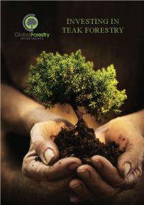 INVESTING IN TEAK FORESTRY