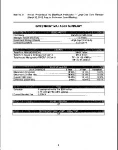 INVESTMENT MANAGER SUMMARY