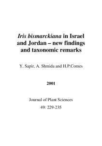 Iris bismarckiana in Israel and Jordan new findings and taxonomic remarks