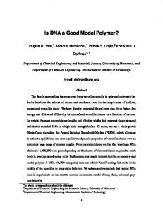 Is DNA a Good Model Polymer?