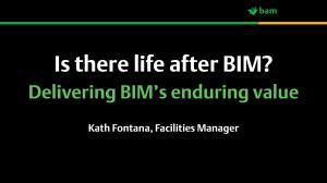 Is there life after BIM?