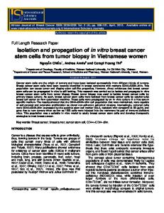 Isolation and propagation of in vitro breast cancer stem cells from tumor biopsy in Vietnamese women