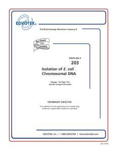 Isolation of E. coli Chromosomal DNA