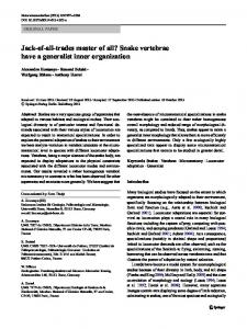 Jack-of-all-trades master of all? Snake vertebrae have a generalist inner organization